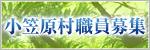 小笠原村職員募集